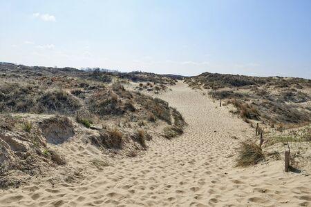 ypres: Footprints on the sand dunes of the Westhoek Dunes, La Panne, Belgium.