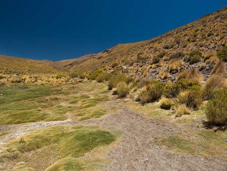 Bolivian highlands green valley Stock Photo