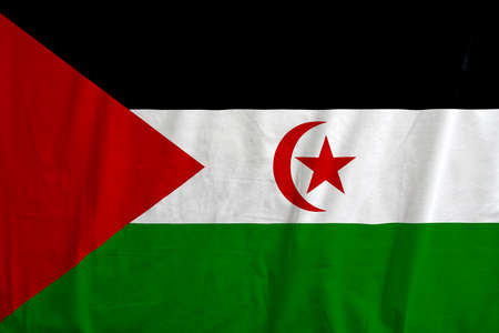 Flag of Western Sahara - North Africa, waving.