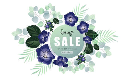 Spring sale banner with blue wild flowers on a eucalyptus background.
