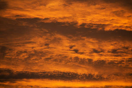 An Abstract Orange cloud