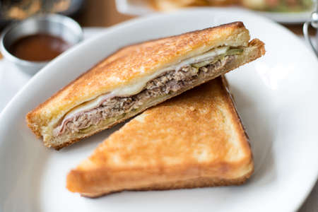 sandwich toast grilled with cheese and tuna