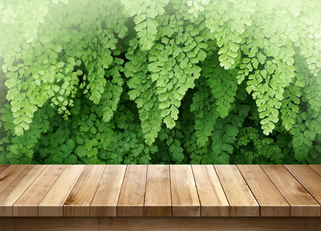 Wood table with green leaves background