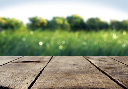 Wood table and green grass blurred background Zdjęcie Seryjne - 51581556