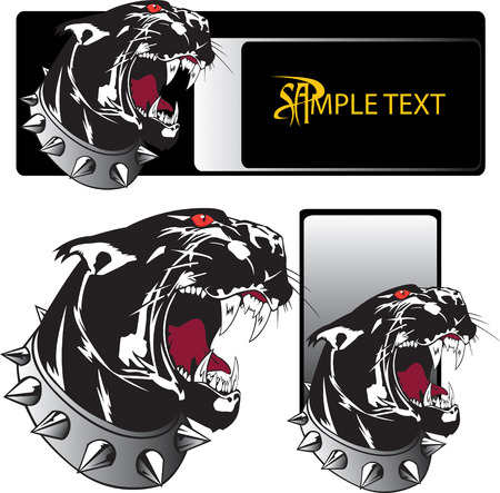 beauty and the beast: Muzzle of the growling shown furious panther Illustration