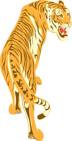 The growling tiger who is climbing up upwards on a grief Illustration