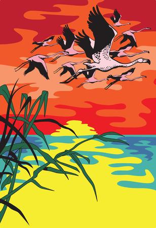 rosnąco: Lotu z Flamingo latające przed słońcem rosnącym nad rzeką