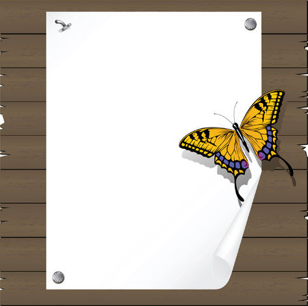 The butterfly on the Paper leaf beaten on a board from boards Vector