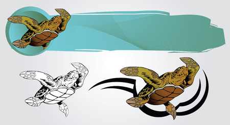 stylistic embellishments: Vector drawing of a floating turtle for design and tattoos