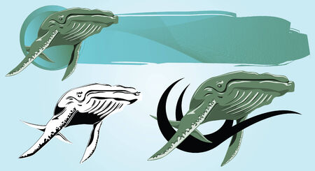 Vector drawing of a floating Whale for design and tattoos
