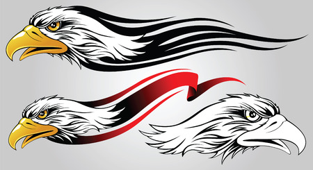 eagle head: Head of an eagle for registration, tattoos and design