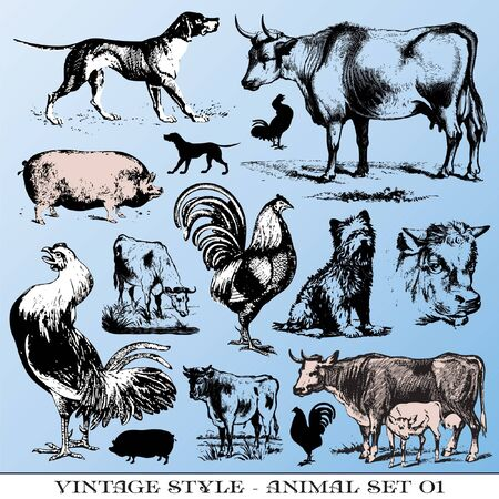 etching pattern: various Vintage-style illustrations  - farm animals set