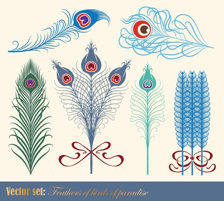 peacock design: vector set: 9 vintage style gold border Illustration