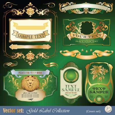set: gold-framed labels, ribbon, ornaments and elements on different topics for decoration and design Ilustração