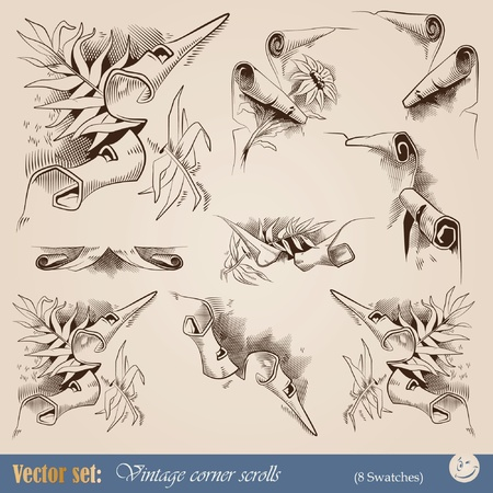 vintage corners for decoration in the form of ragged edges of old scrolls Vector