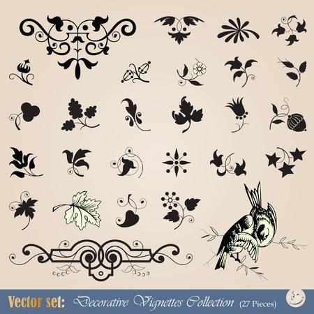 Vintage floral design element, vignettes and ornaments Vector