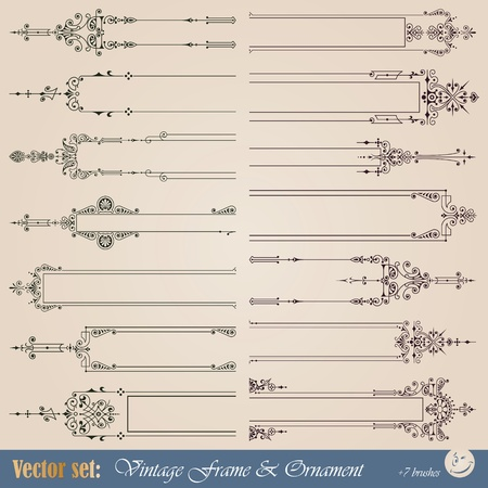 vignette: Frame, border, ornament and element in vintage style
