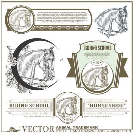 hand drawn label, sticker & vignetten on the theme of horse on different topics for decoration and design Vector