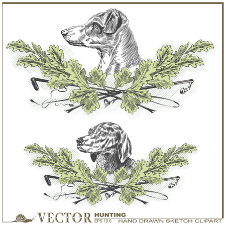 hunting dog: hand drawn sketch on the theme of hunting - Dog heads in oak leaves and a stack and whip