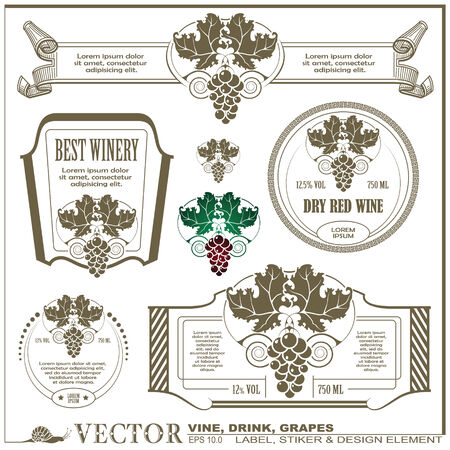 Border style labels on different versions for decoration and design - Vine, drink, grapes