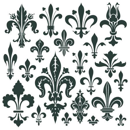 Vector set lily flower - heraldic symbol for decoration and design Illustration