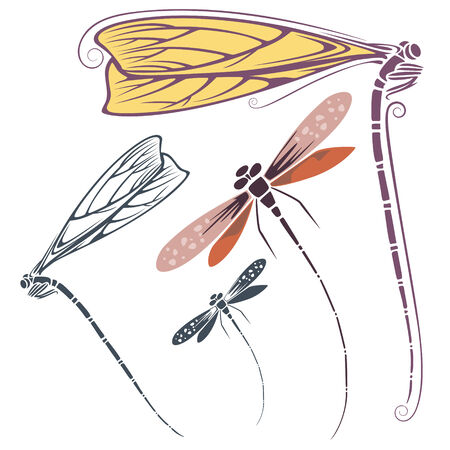 dragonfly: vector dragonfly for invitations, promotional, advertising and greeting cards.