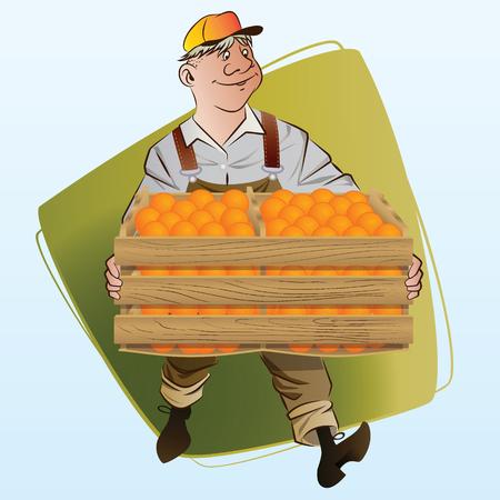 harvesting: Vector stock illustration. Harvesting. A man collects oranges. Illustration