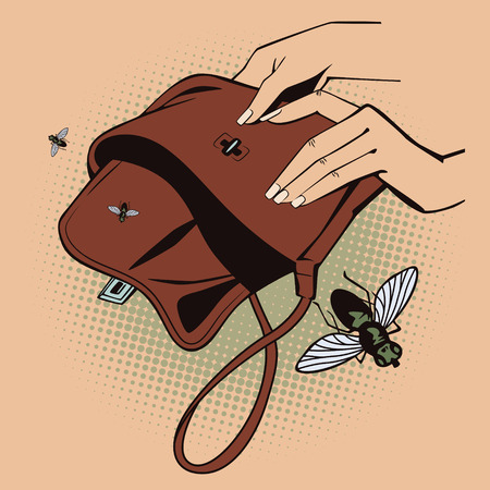 moneyless: Stock illustration. Style of pop art and old comics. Flies fly out from empty handbag.