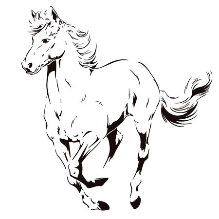 Stock illustration in silhouette style. A galloping horse. Illustration