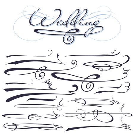 vector set of calligraphic elements for design inscriptions in vintage style Illustration
