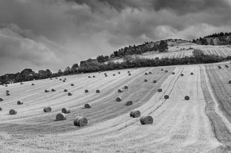 hilly: Black and white hilly landscape rural landscape with hay bales