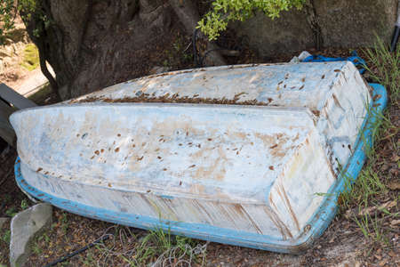 hull: Old abandonned blue hull boat  upside down covered of dry leaves near a big tre