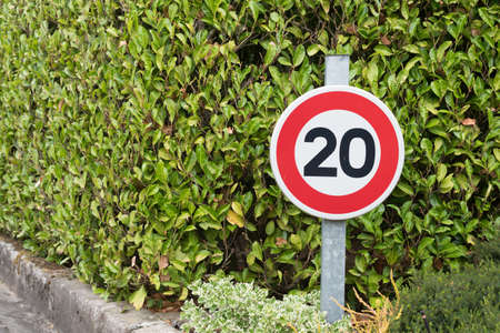 speed limit sign: 20 speed limit sign on a green background
