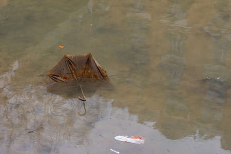 emptying: Old umbrella burried in the sludge during the emptying of the canal St-Martin