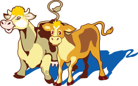 hoofs: A milch cow and her bull calf are standing on a pasture. They are well-fed and groomed.