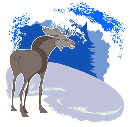 A young elk standing in a clearing in the winter forest Stock Vector - 14862769