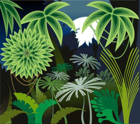 덤불 열대 우림에서 세인트루이스의 장식 이미지