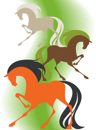 Image of four  silhouettes thoroughbred horses on a green background Vector