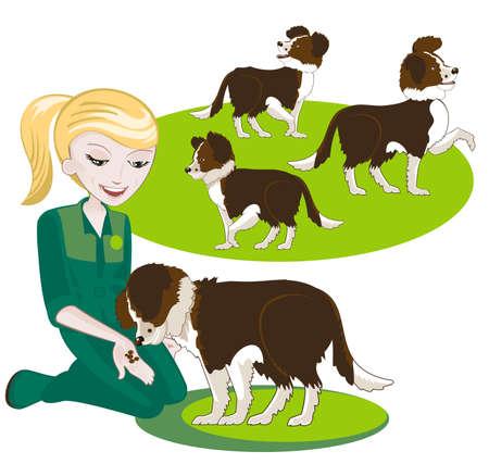 dog leash: Several interchangeable items for illustration on dog training Illustration