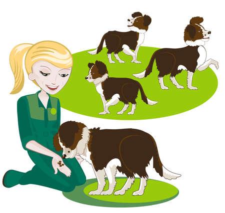 mujer con perro: Varios elementos intercambiables para ilustración sobre el entrenamiento del perro Vectores