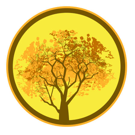 Vector illustration of autumn tree crowns in a circle Vector