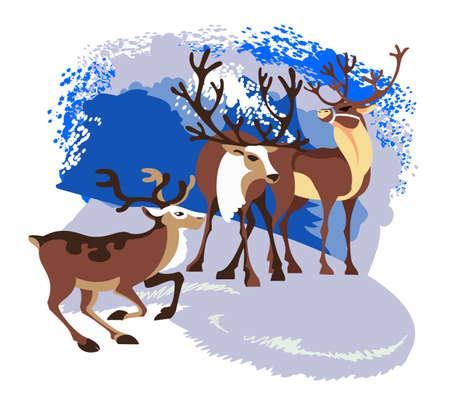 herd: Three great wild reindeer are in their  natural habitat Illustration