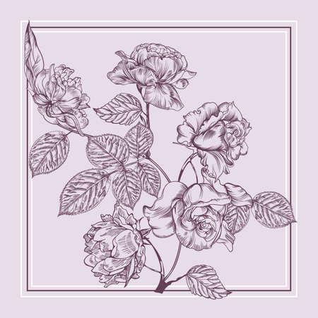 Vintage postcard with rose flowers.  Vector illustration. Illustration