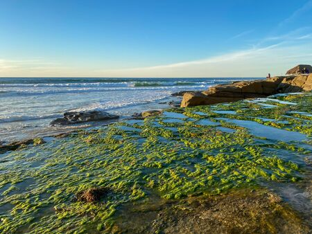 La Jolla shores and beach before sunset twilight in La Jolla San Diego, Southern California Coast. USA. Blue waters of the Pacific Ocean Coastline