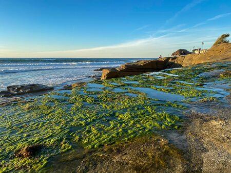 La Jolla shores and beach in La Jolla San Diego, Southern California Coast. USA. Blue waters of the Pacific Ocean Coastline