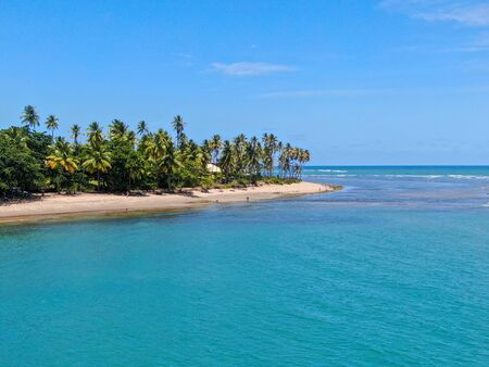 Aerial view of tropical white sand beach, palm trees and turquoise clear sea water in Praia do Forte, Bahia, Brazil. Travel tropical destination in Brazil Archivio Fotografico - 137918491