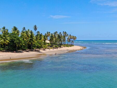 Aerial view of tropical white sand beach, palm trees and turquoise clear sea water in Praia do Forte, Bahia, Brazil. Travel tropical destination in Brazil Archivio Fotografico - 137918646