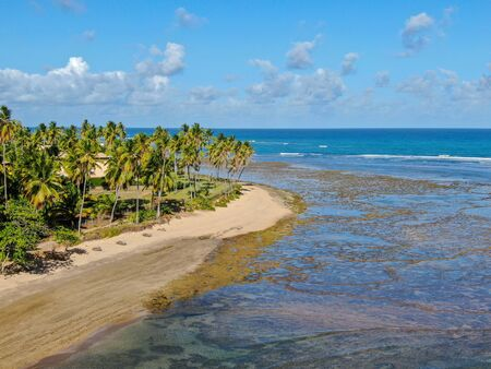 Aerial view of tropical white sand beach, palm trees and turquoise clear sea water in Praia do Forte, Bahia, Brazil. Travel tropical destination in Brazil Archivio Fotografico - 137918145