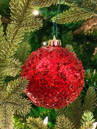 Red and gold decoration on the Christmas tree. Christmass balls on tree twig. Christmas background
