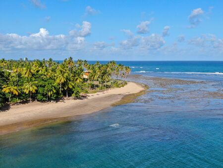 Aerial view of tropical white sand beach, palm trees and turquoise clear sea water in Praia do Forte, Bahia, Brazil. Travel tropical destination in Brazil Zdjęcie Seryjne - 138497841